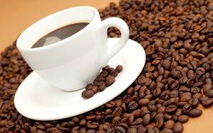 Купить кофе в зернах 1 кг москва veronese arabica brazil